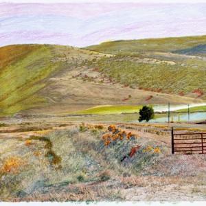 Granular Meadows 03