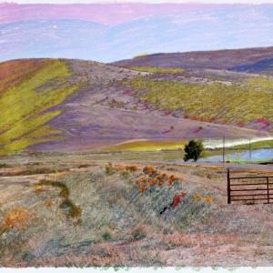 Granular Meadows 04